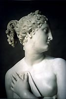 Venus after her bath by Canova (copy - detail)